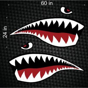Shark Teeth_Large